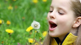 Child blowing on dandelion in park outdoor. Little girl blowing on dandelion in park outdoor stock video footage