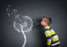 Child blowing dandelion seeds. On a blackboard concept for wishing, hope and aspirations Royalty Free Stock Photo