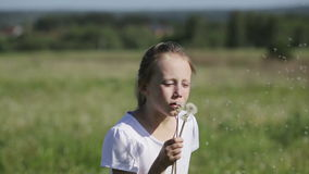Child blowing dandelion. Young girl in the meadow blowing wishes on dandelion seed stock video footage