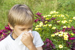 Child is blowing his nose. Flowers and green meadow behind him. Healthcare, medicine, allergy concept. Stock Image