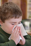 Child Blowing Nose. Child holding a tissue up to his nose Royalty Free Stock Image