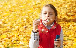 Child blowing soap bubbles Royalty Free Stock Photo