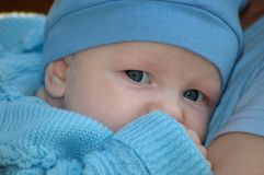 Child in blue. Portrait of the child in blue Royalty Free Stock Photos