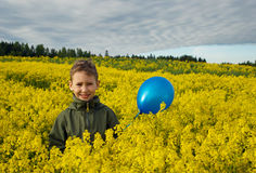 A child with a blue balloon on a yellow field of flowers Royalty Free Stock Photo