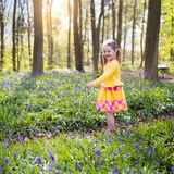 Child with bluebell flowers in spring forest Royalty Free Stock Photography