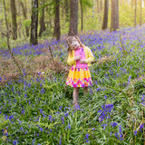 Child with bluebell flowers in spring forest Stock Photography