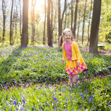 Child with bluebell flowers in spring forest. Child with bluebells. Little girl in pretty dress playing in beautiful spring forest with purple bluebell flowers Stock Photo