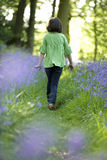 Child and bluebells Royalty Free Stock Photography