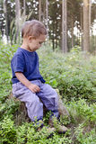 Child in blueberry forest stock photography