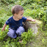 Child in blueberry forest stock photos