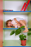 Child in a bookcase with a toy. Little girl lying on a bookshelf with her toy cat stock images