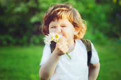 Child with bouquet of daisies in his hands. Royalty Free Stock Images