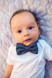 Child bow tie butterfly Stock Photo