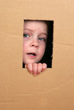 Child in box. Young girl looking from brown carton box Stock Images