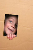 Child in box. Young girl looking from brown carton box Stock Photos