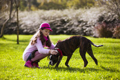 Child with a boxer dog. At the city park Stock Image