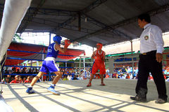 Child boxing championship Stock Images