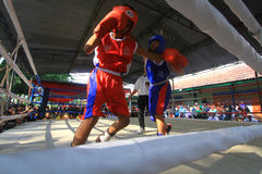 Child boxing championship Stock Photo