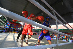 Child boxing championship Royalty Free Stock Photography