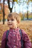 Child boy is in autumn city park with his family. Bright yellow trees royalty free stock photo