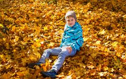 Child boy in autumn park stock photography
