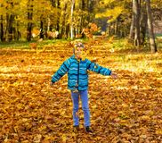 Child boy in autumn park with foliage royalty free stock image