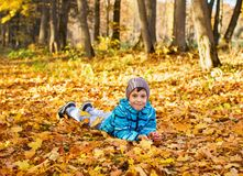 Child boy in autumn park with foliage. royalty free stock photos