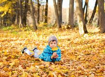 Child boy in autumn park with foliage. stock image