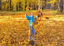 Child boy in autumn park with foliage. royalty free stock image