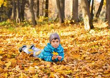 Child boy in autumn park with foliage. royalty free stock photography