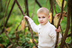 Child boy in a bright sweater with lianas in the forest. Kid boy in a bright sweater with lianas in the forest, autumn, summer stock photos