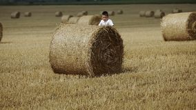 Child Boy In The Field stock footage
