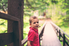 Child boy in forest, springtime Royalty Free Stock Photography