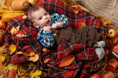 Child boy lie on tartan plaid with yellow autumn leaves, apples, pumpkin and decoration, fall season Stock Image
