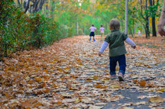 The child, a boy  in the park. Royalty Free Stock Images