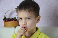 A child boy is picking up some cherries with his left hand from a bowl, closeup. A child boy is picking up some cherries with his left hand from a bsket, closeup stock photography