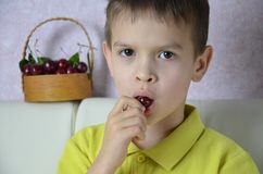 A child boy is picking up some cherries with his left hand from a bowl, closeup. A child boy is picking up some cherries with his left hand from a bsket, closeup stock photos