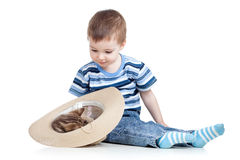 Child boy playing with kitten stock image