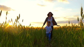 A child boy runs with his mother in a field of golden wheat, playing in nature.