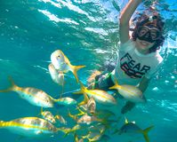 Child boy snorkeling in Cuba royalty free stock images