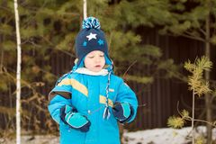 A child boy takes a walk in a winter forest royalty free stock photography