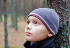 Child boy thoughtful pensive alone. Forest wood Royalty Free Stock Image