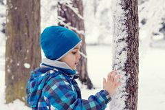 Child in a winter park or forest stock photos