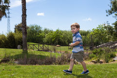 Child boy walking in park Royalty Free Stock Photography