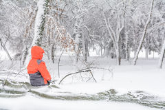 Child and broke down tree of snow. Child sitting over the trunk Stock Photo