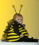 Child in Bumble Bee Outfit Royalty Free Stock Photo