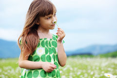 Child at camomile field Royalty Free Stock Images