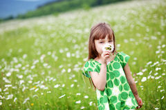Child at camomile field Royalty Free Stock Photo