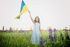 Child carries fluttering blue and yellow flag of Ukraine. In lupine field. Ukraine`s Independence Day. Flag Day stock photo