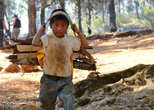 Child Carrying Firewood stock images